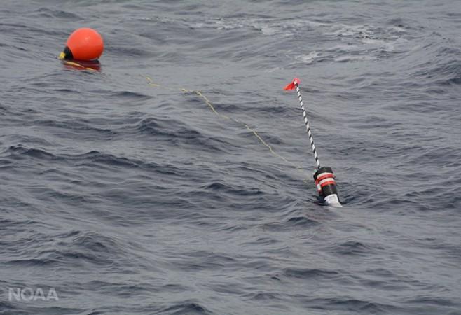 Deep-Sea Sensors Aid Search for Rare Whales