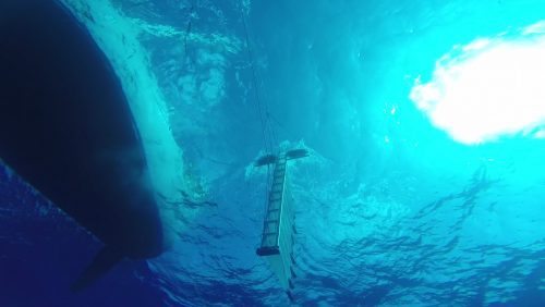 Teledyne Optech Teams Up with The Ocean Cleanup to Study the Great Pacific Garbage Patch