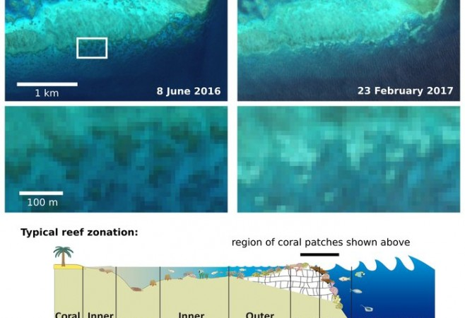 Satellites Observe More Bleaching of Great Barrier Reef