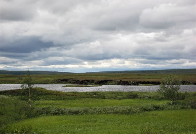 Wetlands Are Key for Accurate Greenhouse Gas Measurements in Arctic