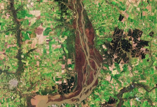 Uruguay River Wetlands