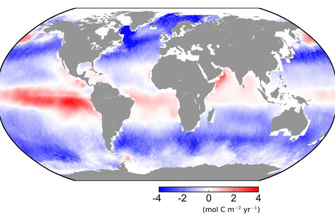 Can Oceans Turn the Tide on Climate Crisis?