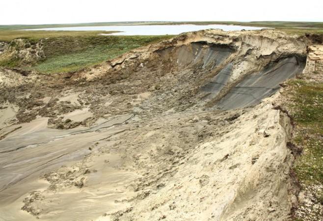 Landslides Have Long-Term Effects on Tundra Vegetation