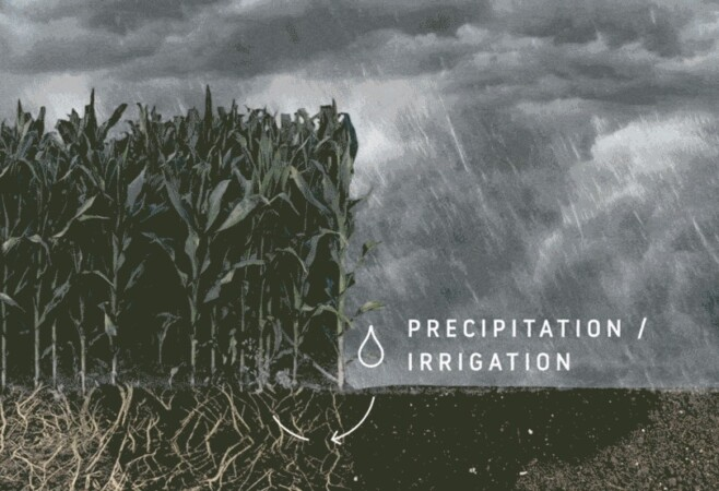 Evapotranspiration: Watching Over Water Use